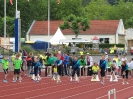 Landeskinderturnfest 2014 Marburg_8