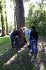 Projekt Wald bewegt_12