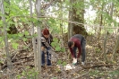 Projekt Wald bewegt_17