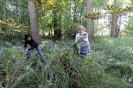 Projekt Wald bewegt_19