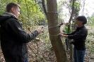 Projekt Wald bewegt_3