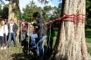 Projekt Wald bewegt_4