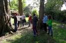 Projekt Wald bewegt_9